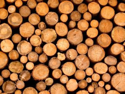 Holz für Holzheizkraftwerke